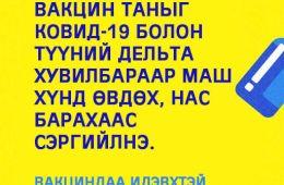 241390357_4366386926783166_3761194992205737021_n.jpg